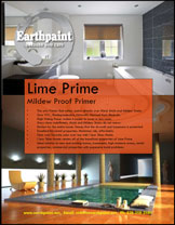 Best paint for mold